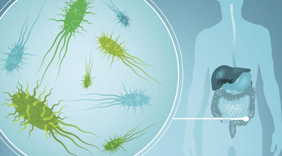 Mikrobiomtestet som ger svar om hälsan! Certiferingskurs med Linda Rahbek