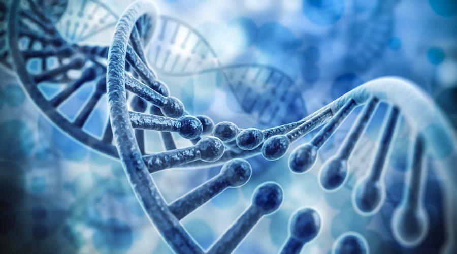 DNA – Arv och genetik