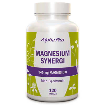 Magnesium Synergi 120 kap burk